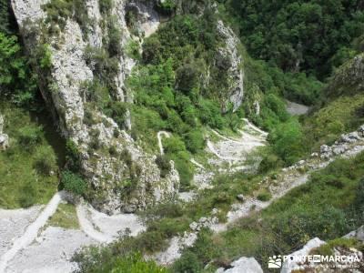 Picos de Europa-Naranjo Bulnes(Urriellu);Puente San Isidro; amigos madrid agencias de viajes